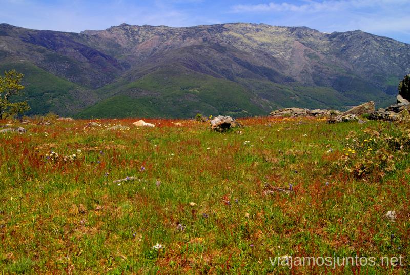 Tranquilidad total Ruta en 4x4 por lo alto del Valle del Jerte, Extremadura