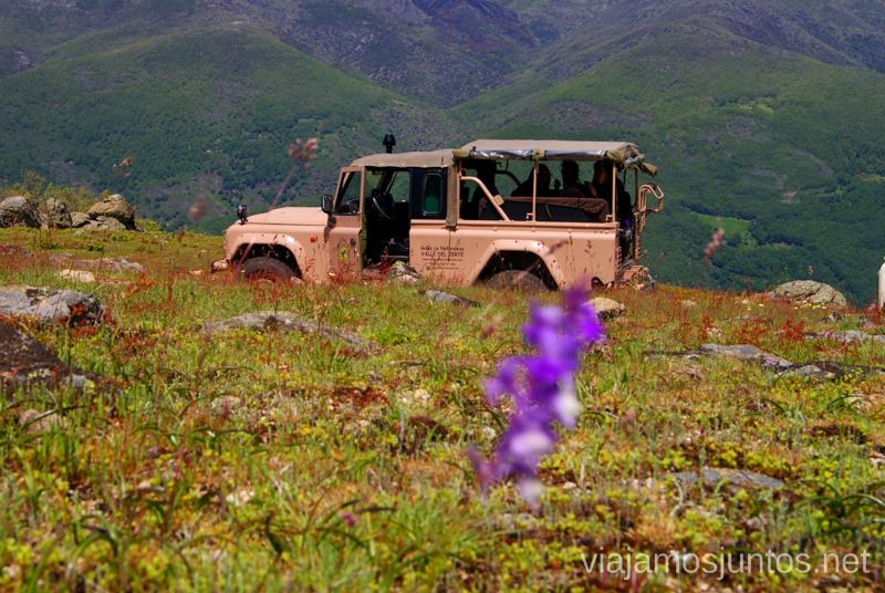 En un 4x4 descubriendo el monte Ruta en 4x4 por lo alto del Valle del Jerte, Extremadura