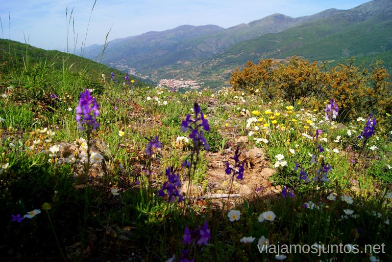 ¡Qué pequeño el pueblo! Ruta en 4x4 por lo alto del Valle del Jerte, Extremadura
