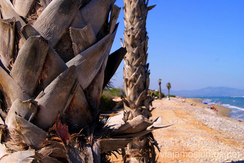 La playa detrás del camping Didota playas de la Costa del Azahar, Castellón, Valencia.