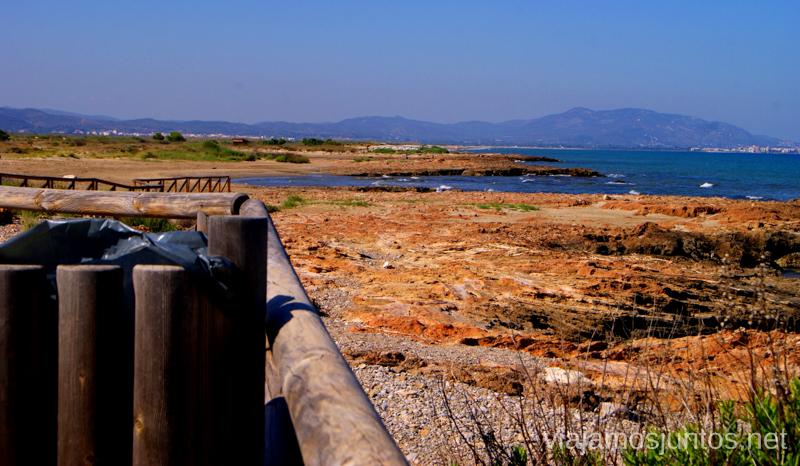 Colores intensos del parque natural Dos rutas en bicicleta en los alrededores de Oropesa del Mar, que hacer en Castellón, Valencia