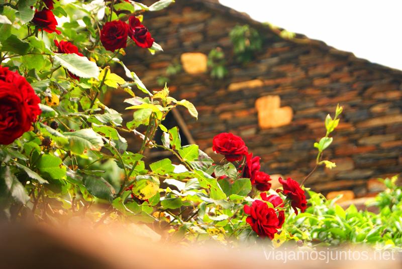 Rosas y Piedra Negra La historia de uno de los pueblos negros, Roblelacasa. Guadalajara