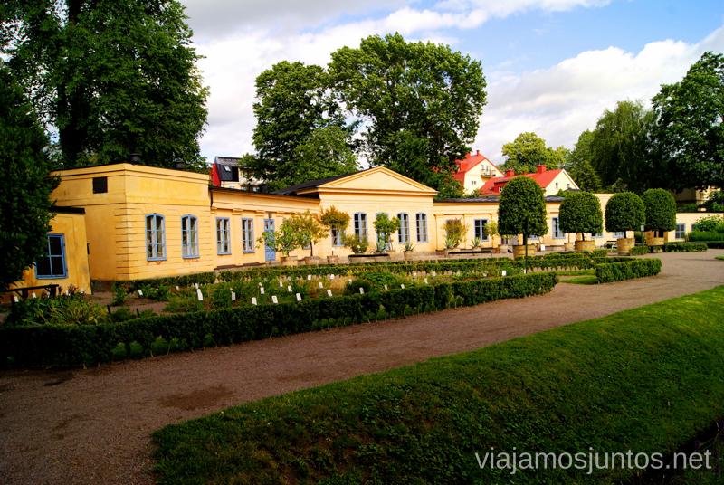 El Jardín de Linnaeus Que ver y que hacer en Uppsala, Suecia. Atracciones turísticas. Visitas.
