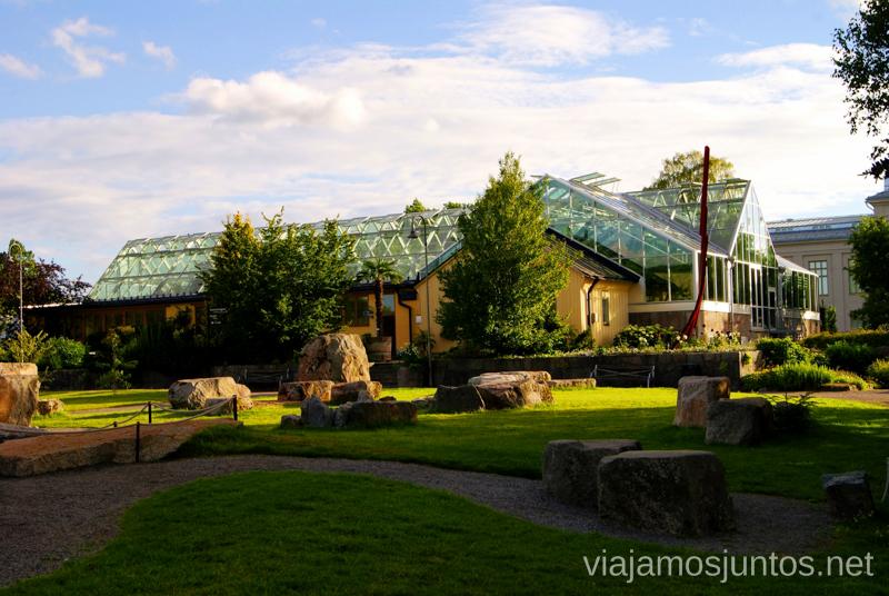 El invernadero del Jardín Botánico Que ver y que hacer en Uppsala, Suecia. Atracciones turísticas. Visitas.
