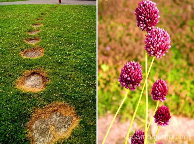 Detalles del Jardín Botánico del Castillo/Universidad Que ver y que hacer en Uppsala, Suecia. Atracciones turísticas. Visitas.
