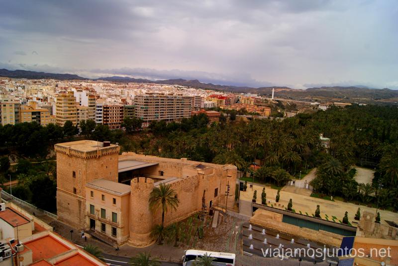 Fijáos en el palmeral que rodea la ciudad de Elche Que ver y que hacer en Elche, Alicante, Valencia. Datos prácticos.