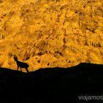 Las sombras de Gredos Trekking de 3 días por Gredos, Castilla y León, historias y anécdotas de la ruta