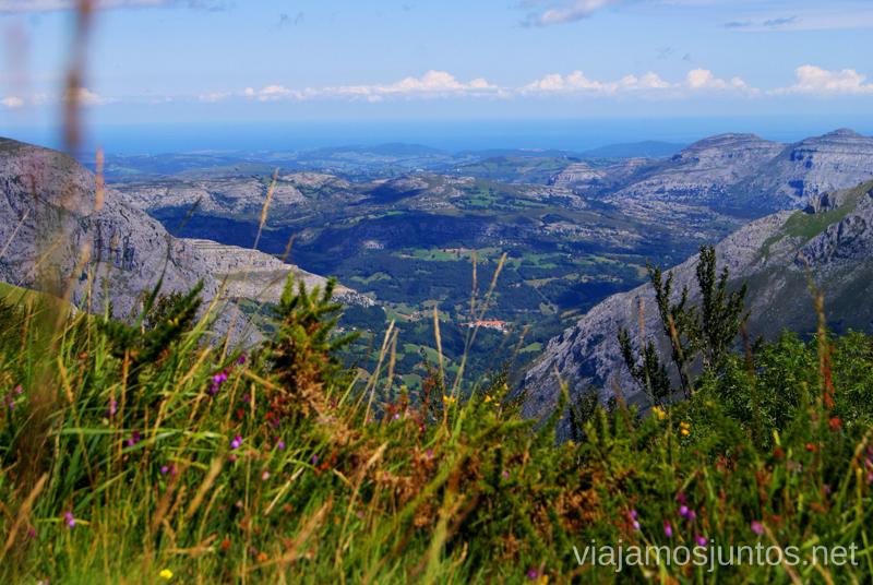 El horizonte a través de las flores Ruta circular Vuelta a Colina, Parque Natural de los Collados del Asón, Cantabria