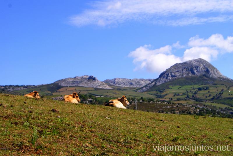 Meditando... Ruta circular Vuelta a Colina, Parque Natural de los Collados del Asón, Cantabria