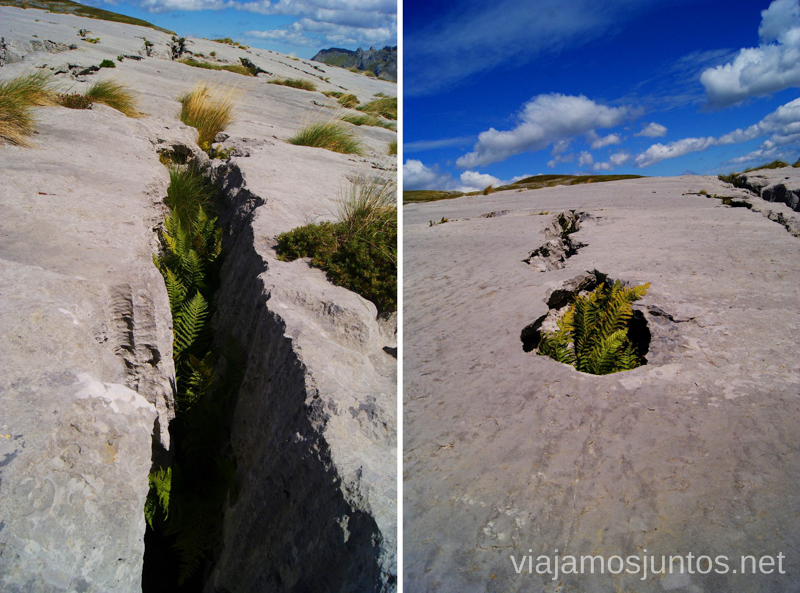 Trampas inesperadas Ruta circular Vuelta a Colina, Parque Natural de los Collados del Asón, Cantabria