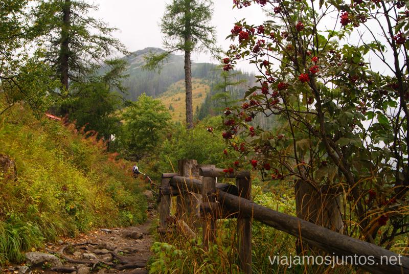 La ruta bien cómoda Trekking en Altos Tatras, diario de la travesia. Eslovaquia #EslovaquiaJuntos High Tatras Vysoké Tatry Slovakia