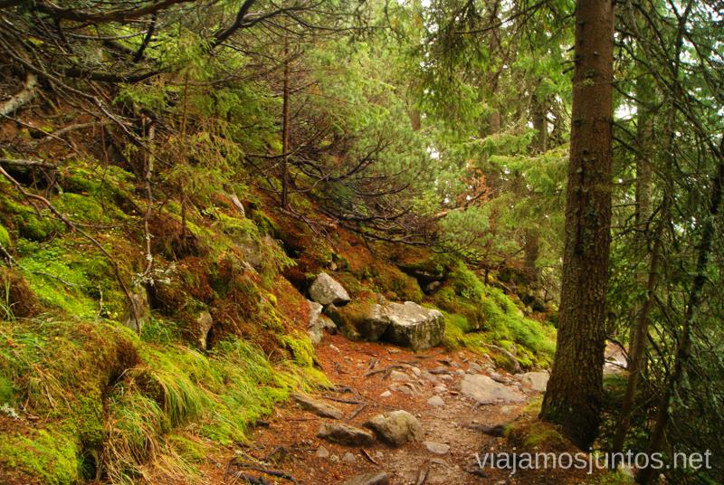 Caminos encantados Trekking en los Altos Tatras, Eslovaquia High Tatras, Slovaquia #EslovaquiaJuntos Parte III Diario