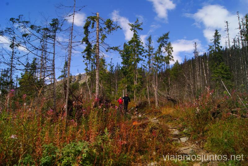 Un punto rojo haciendo la ruta Trekking en los Altos Tatras, Eslovaquia High Tatras, Slovaquia #EslovaquiaJuntos Parte III Diario