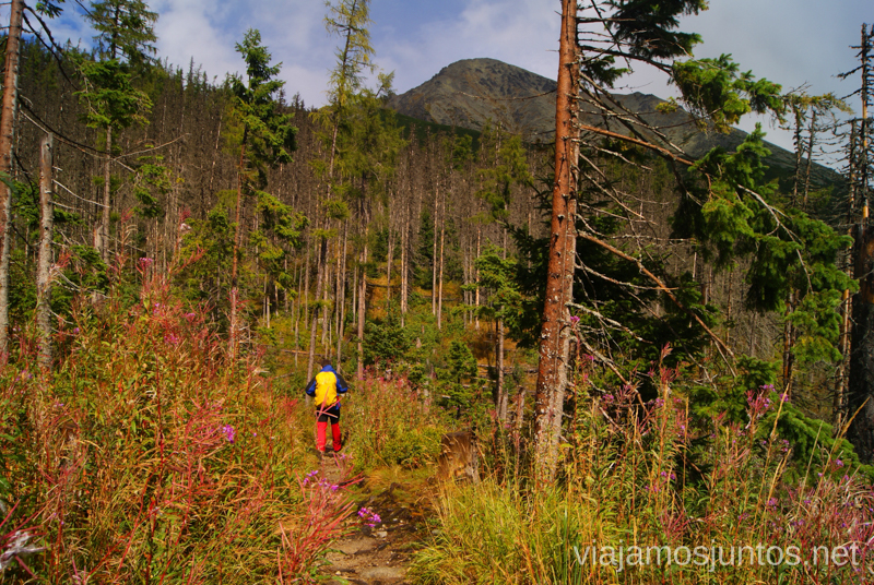 Denys corriendo hacia un hotel cómodo y calentito ;) Trekking en los Altos Tatras, Eslovaquia High Tatras, Slovaquia #EslovaquiaJuntos Parte III Diario