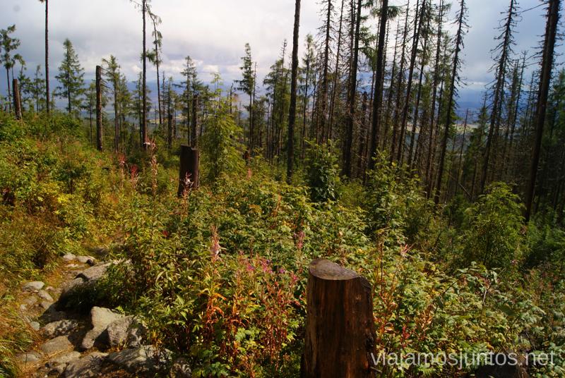 Último empujón Trekking en los Altos Tatras, Eslovaquia High Tatras, Slovaquia #EslovaquiaJuntos Parte III Diario