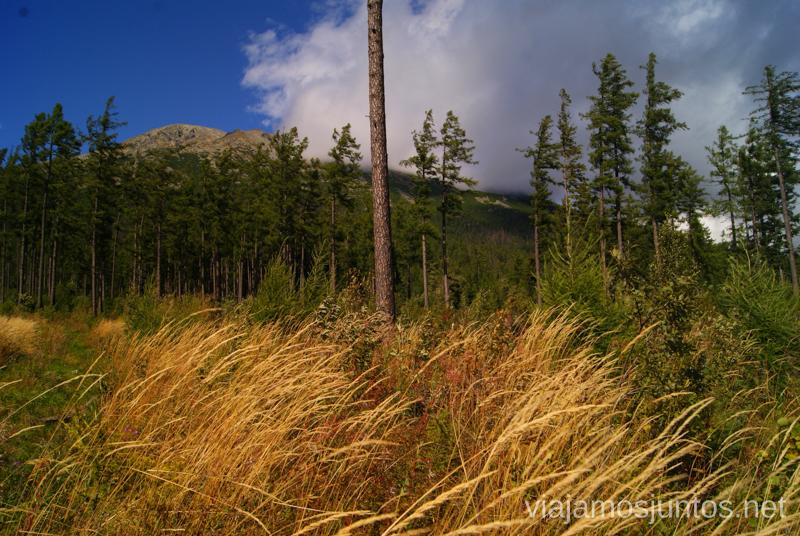 Un poco de viento Preparación del trekking de dos días por Altos Tatras, Eslovaquia. High Tatras, Slovakia