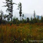 Paisaje cambiante Trekking en Altos Tatras, diario de la travesia. Eslovaquia #EslovaquiaJuntos High Tatras Vysoké Tatry Slovakia