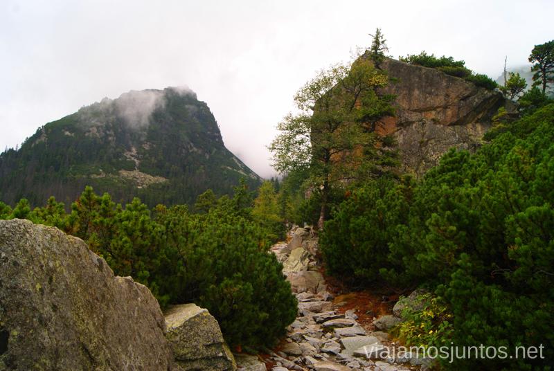 Senda muy bien acondicionada Trekking en Altos Tatras, diario de la travesia. Eslovaquia #EslovaquiaJuntos High Tatras Vysoké Tatry Slovakia