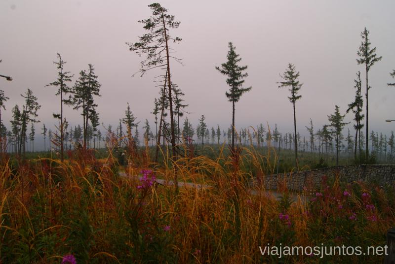 Altos Tatras en niebla Trekking en Altos Tatras, diario de la travesia. Eslovaquia #EslovaquiaJuntos High Tatras Vysoké Tatry Slovakia