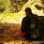 Mochila para recoger setas Buscar setas en Madrid. Otoño 2015 Consejos prácticos