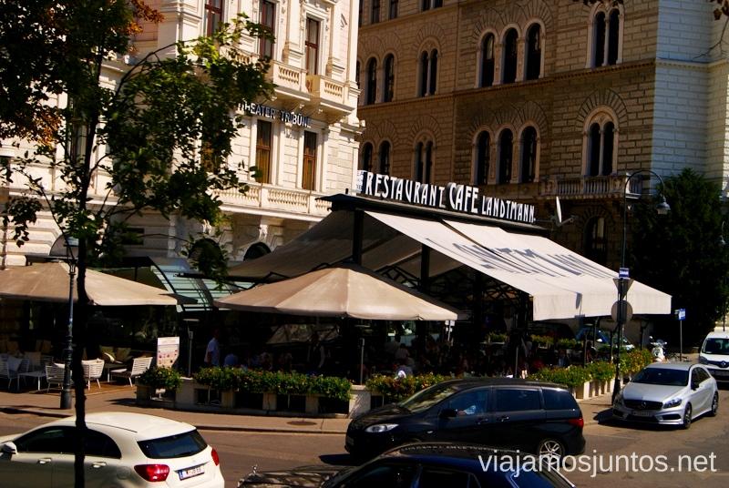 Café-restaurante Landtmann Viena en 24 horas, itinerario. Que hacer y que ver en Vienna