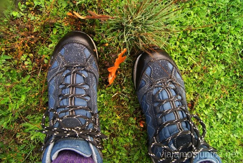 Mis botas hiTec, ¡Qué bien se han portado esta temporada! Los beneficios para la salud de recoger setas, otoño