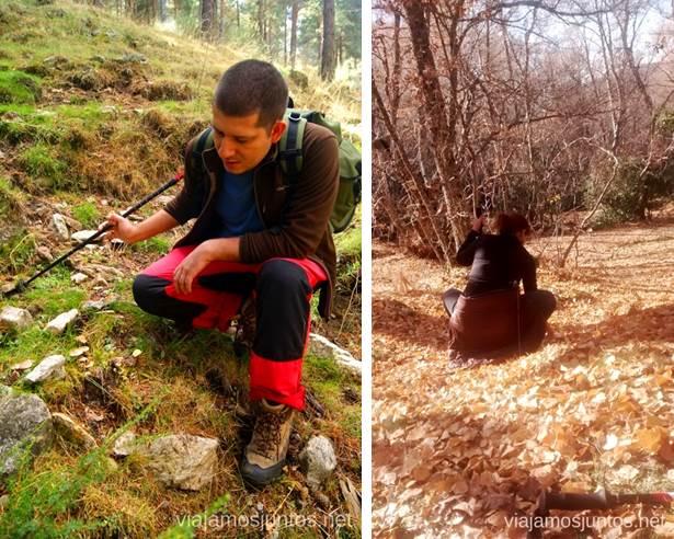 Sentadillas Los beneficios para la salud de recoger setas, otoño