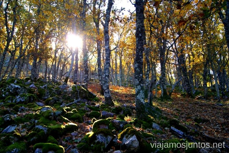 Captando la luz Descubriendo el Edén de la Mancha, el parque natural del Valle de Alcudia y Sierra Madrona