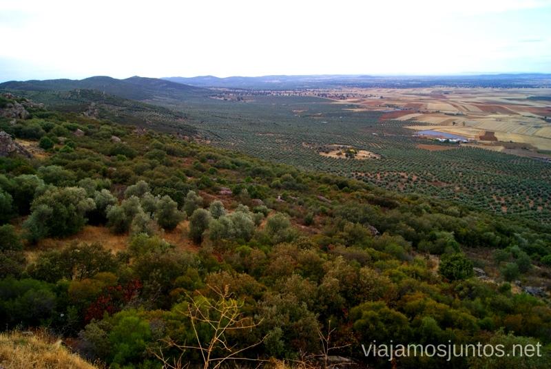 Campos infinitos de olivos Un itinerario de un día por Almodóvar del Campo, Ciudad Real, Castilla-la Mancha Que ver y que hacer