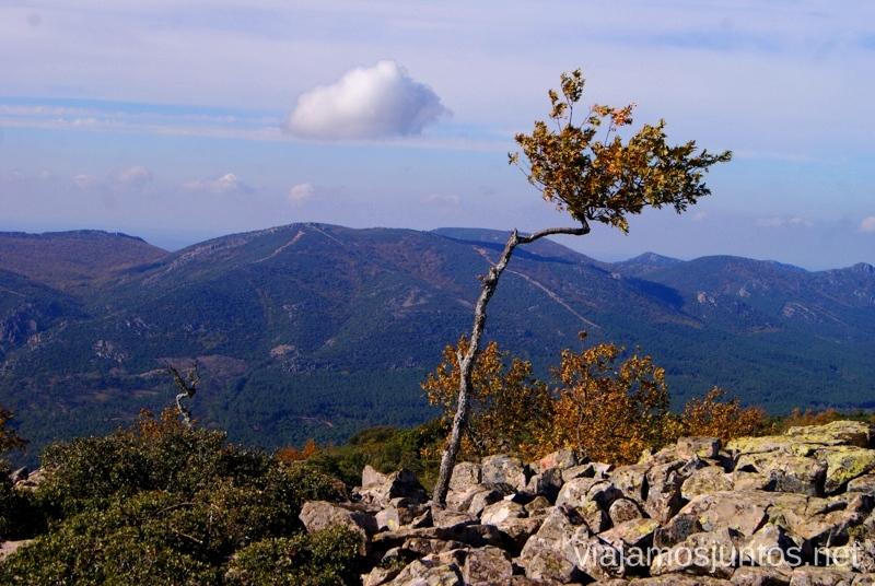 Vistas desde el Cerro Descubriendo el Edén de la Mancha, el parque natural del Valle de Alcudia y Sierra Madrona