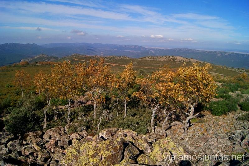 Otoño en Sierra Madrona Descubriendo el Edén de la Mancha, el parque natural del Valle de Alcudia y Sierra Madrona