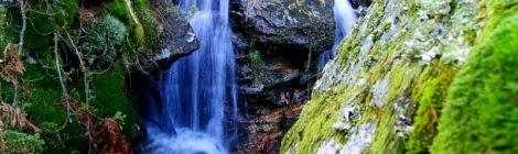 Musgo, hojas otoñales y aguas abundantes, ¿conocéis algo más bonito? Ruta de las cascadas, Navacerrada, Sierra Guadarrama, Madrid. Nieve, río, cascaditas, vistas panorámicas