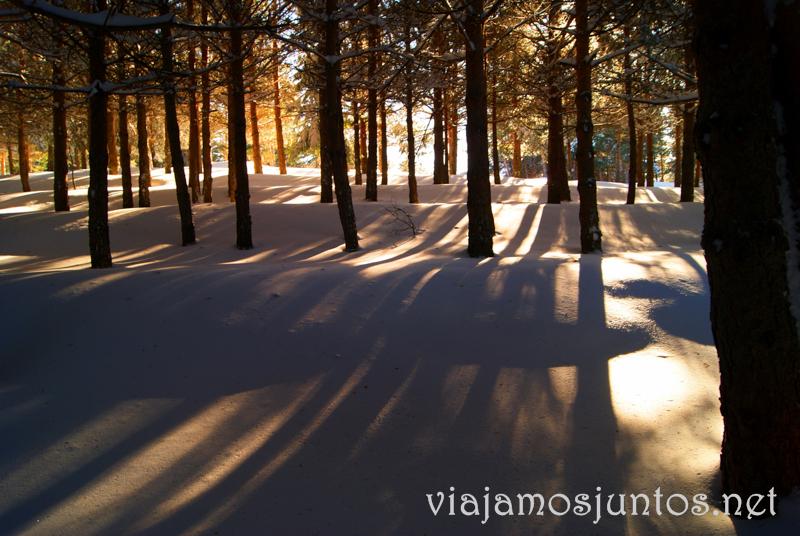 Los tonos dorados del atardecer en la nieve Caminatas de invierno. Cómo vestirse barato para rutas de invierno no tener frío.