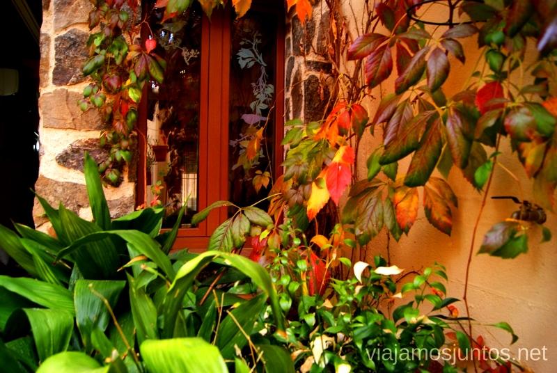Detalles que alegran la vista Donde comer y alojarse en el Valle de Alcudia, Edén de la Mancha, Castilla la Mancha