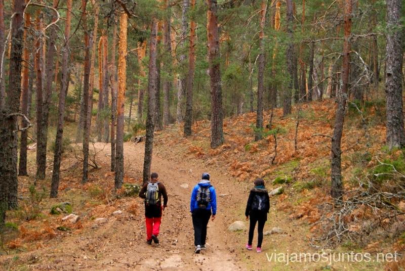 Empezamos por un camino bien marcado Senderismo por la zona de San Rafael, Madrid Segovia; Ruta de la Cueva Valiente