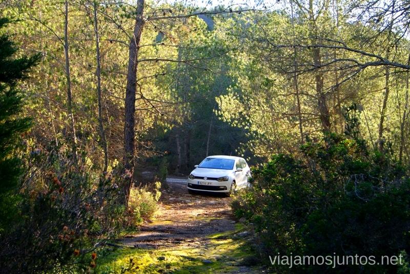 Perdidos en medio del bosque Rincones curiosos de Ibiza. Que ver y que hacer en la isla. Baleares