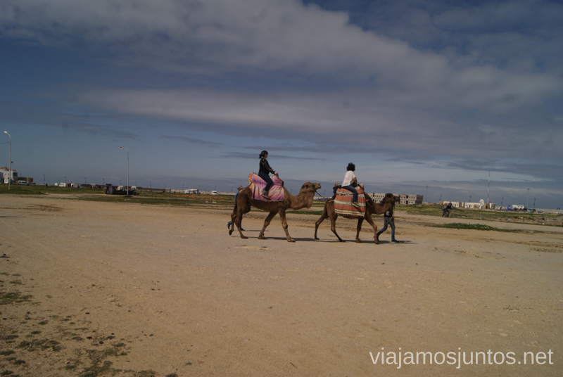 ¿Nos vamos encamello? Ruta por el Norte de Marruecos, que ver y que hacer