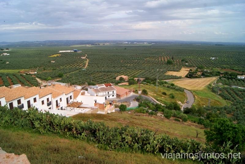 Olivos y más olivos Ruta de los castillos y batallas, Jaén, Andalucía