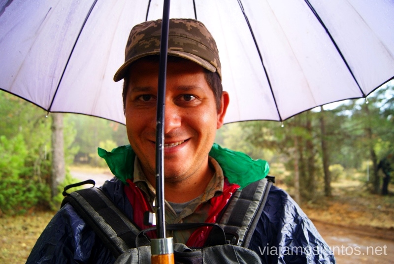 ¡Qué no se os olvide el paraguas! La berrea del ciervo y la ronca del gamo en la Serranía de Cuenca, Castilla-La Mancha
