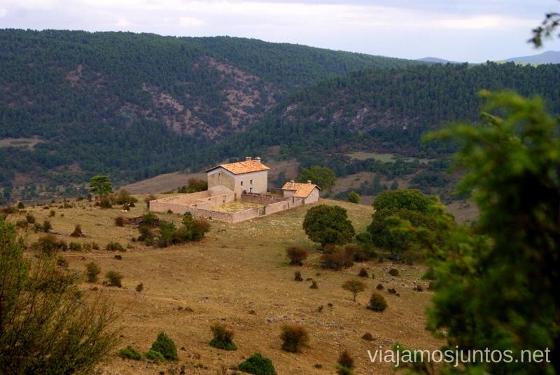 La finca La berrea del ciervo y la ronca del gamo en la Serranía de Cuenca, Castilla-La Mancha