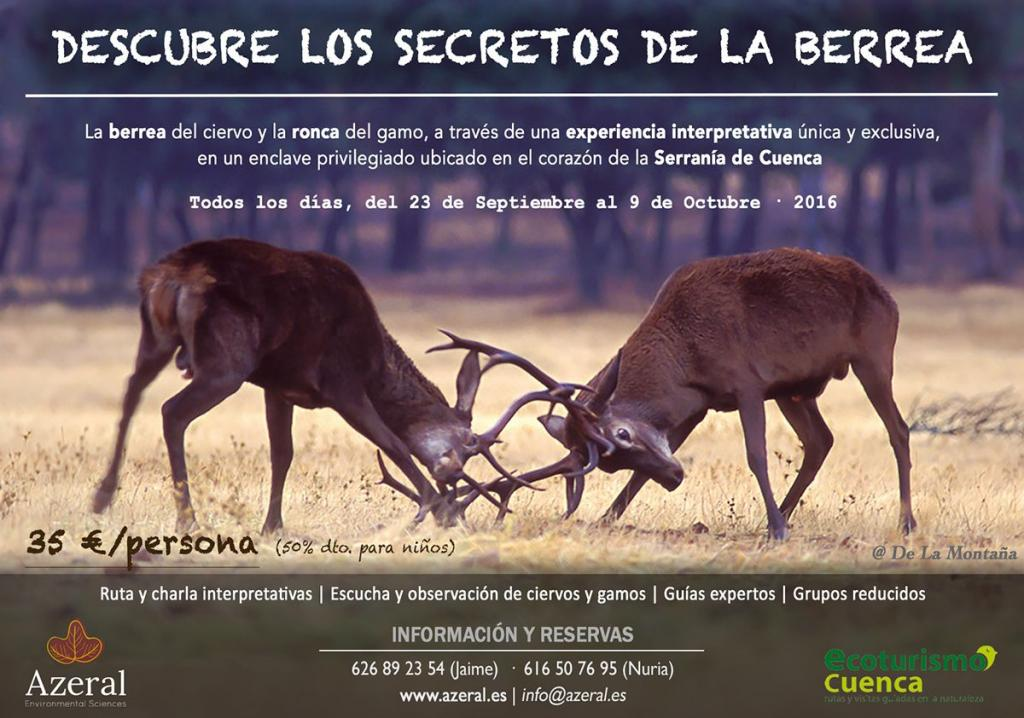 Descubre los secretos de la berrea La berrea del ciervo y la ronca del gamo en la Serranía de Cuenca, Castilla-La Mancha