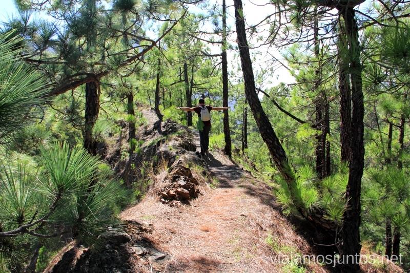 Un senda un tanto estrecha con precipicios por al camino a la Hoya Verde Ruta de la Caldera de Taburiente, La Palma, Islas Canarias
