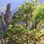 El Roque Idafe, el roque sagrado de los aborígenes Ruta de la Caldera de Taburiente, La Palma, Islas Canarias