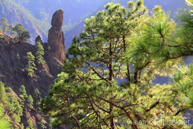 La ruta integral de la Caldera de Taburiente Un viaje a la isla de La Palma, islas Canarias