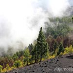 Y llegó la niebla... Ruta de los Volcanes, en la isla de la Palma, Islas Canarias #LaPalmaJuntos