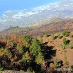 Vistas de la Costa Oeste Ruta de los Volcanes, en la isla de la Palma, Islas Canarias #LaPalmaJuntos