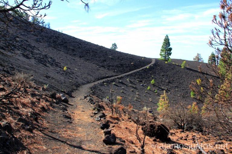 El camino en la Ruta de los Volcanes Ruta de los Volcanes, en la isla de la Palma, Islas Canarias #LaPalmaJuntos