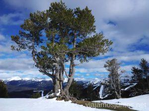 Paisajes de Andorra Información práctica para esquiar en Vallnord, Andorra. Consejos y nuestras experiencias