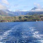 Saliendo del puerto de Tazacorte con Ocean Explorers a la caza fotográfica de los crustáceos Que hacer en la Palma, 4 actividades muy top