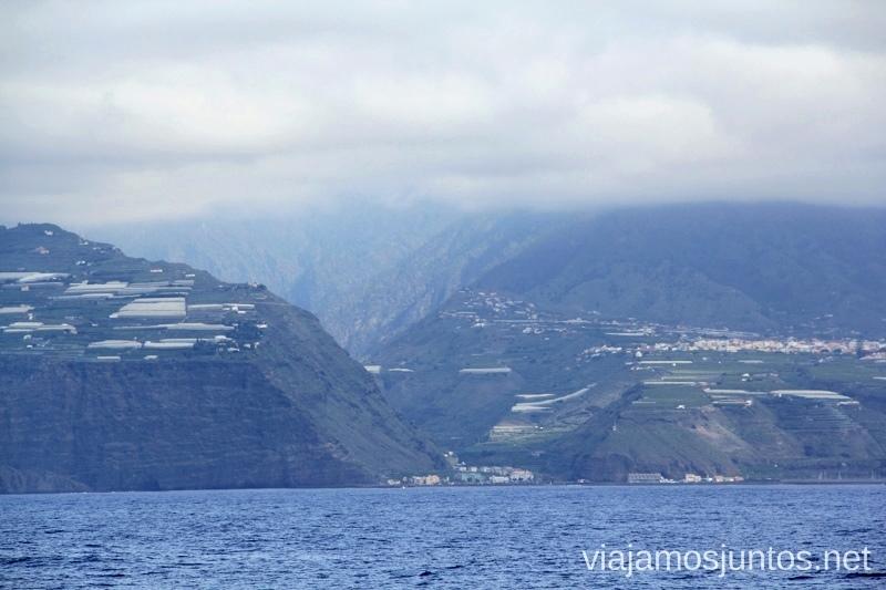 Acantilados del Oeste en la Palma, Islas Canarias Que hacer en la Palma, 4 actividades muy top